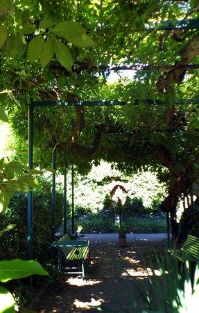 Casa Santo Nome di Gesu: Jardim.