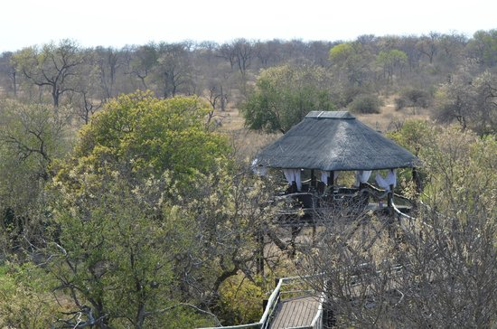 Ezulwini Game Lodges: The view from the deck of Billy's Lodge