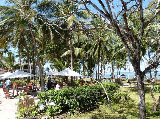 Diani Sea Resort: sea view