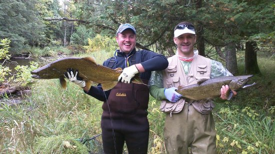 Pere Marquette River Lodge: pair of fish few minutes apart