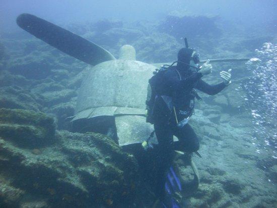 Diving with deep blue dive center bodrum turkey - Dive deep blue ...