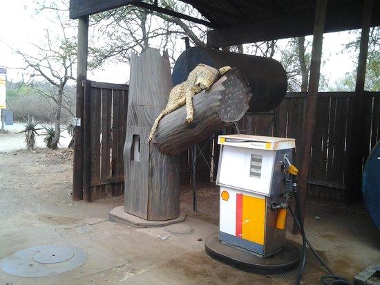 Jabula Lodge: marloth park petrol station