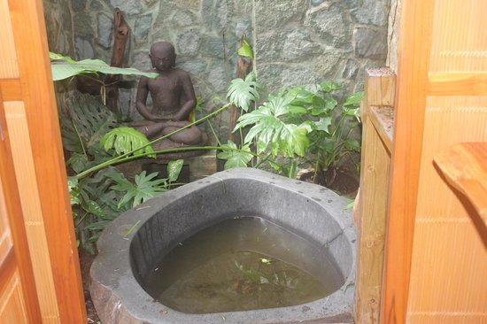 Pranamar Villas and Yoga Retreat: outdoor tub / shower filled with dirty water and debris