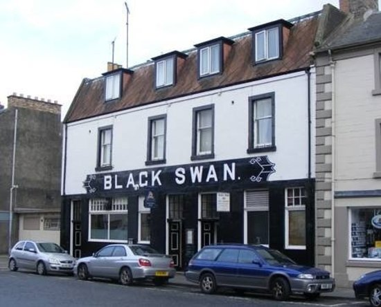 black swan review Find helpful customer reviews and review ratings for black swan at amazoncom read honest and unbiased product reviews from our users.