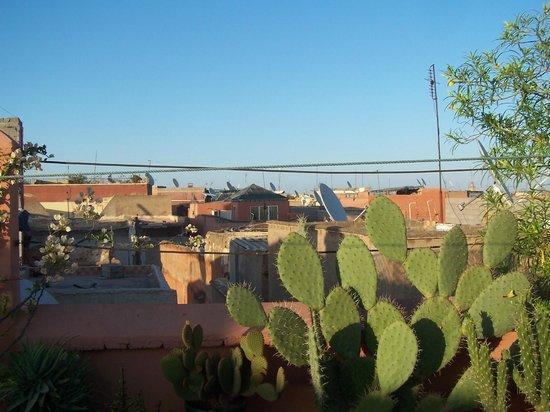Riad Miski: vue depuis la terrasse