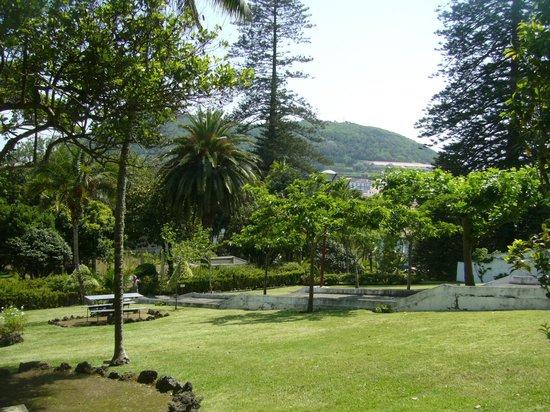 Azoris Angra Garden Plaza Hotel: A incrivel visão do verde