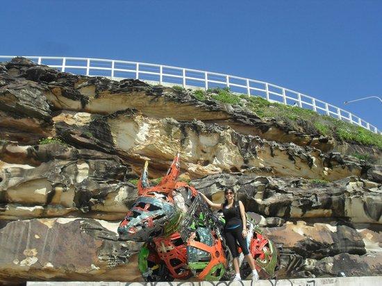 Sydney Coast Walks - Day Walks: Abaixo da encosta.