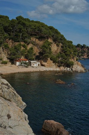 Running and Trekking - Day Tours : Hidden cove