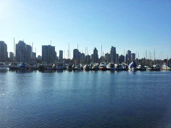 Luxury Transport - Day Tours: Downtown Vancouver water and marine view