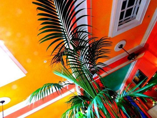 Colony Hotel and Cabana Club : Bright tropical colors