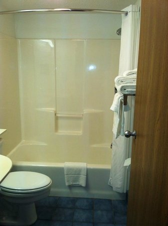 Mt. Pleasant Inn & Suites: Bathroom