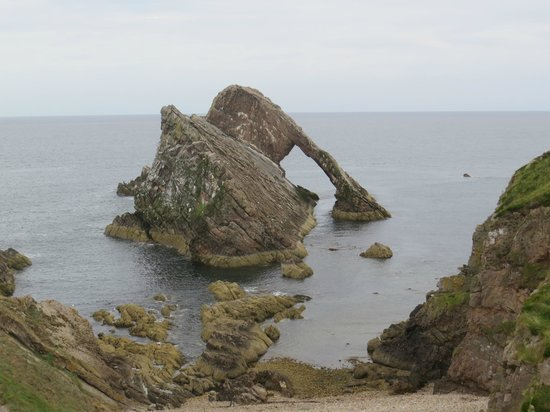 Gemini Marine Tours: Bowfiddle Rock
