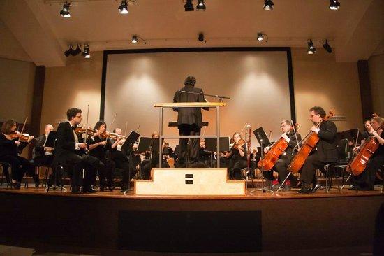 Sudbury Symphony Orchestra
