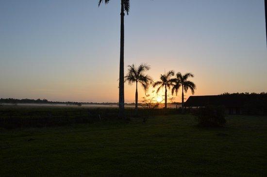 Fazenda Nossa Senhora do Carmo : view from the house at sunrise