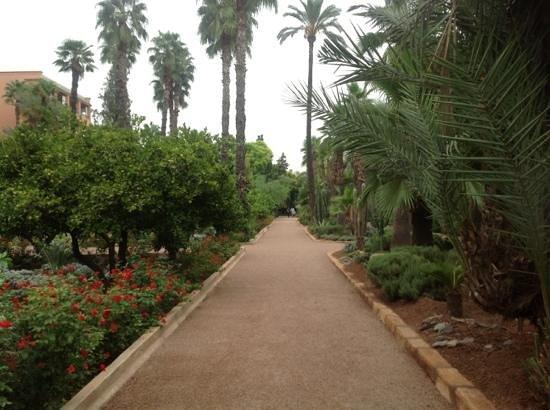 La Mamounia Marrakech: les jardins de la mamounia