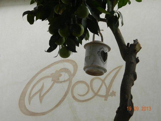 Riad les Orangers d'Alilia Marrakech: Courtyard