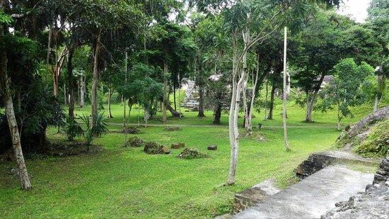 Lost World: Tikal