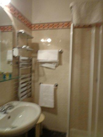 Hotel Collodi : bathroon