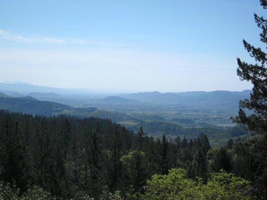 Napa Valley, Kalifornien: At Cade Winery, very beautiful view.