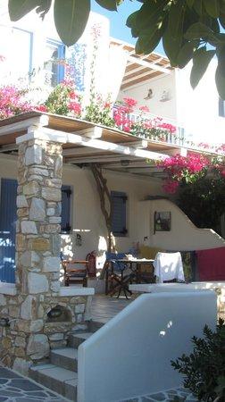 Ilios of Paros: Lo studios