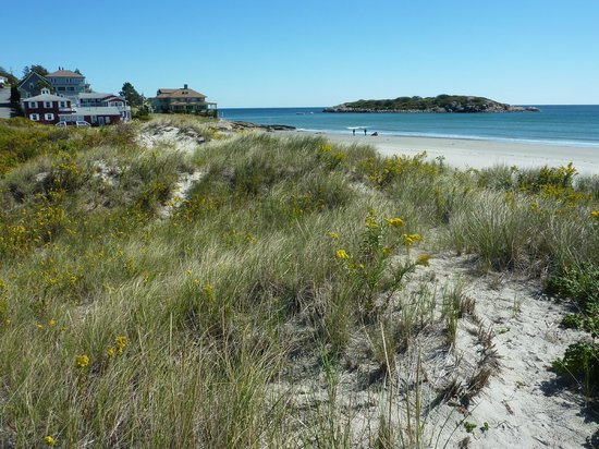 Good Harbor Beach Inn : Looking north with Inn in the distance