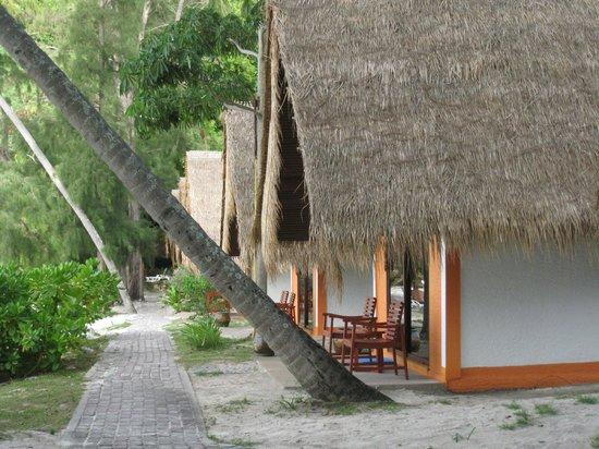 Coral Island Resort : Cabañas en primera linea de playa