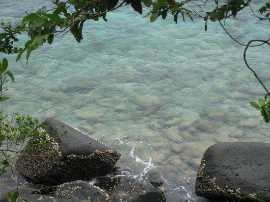 Coral Island Resort : De camino a Banana Beach