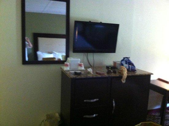 Ramada Bordentown : The Room