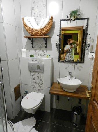 Hotel Sphendon : baño