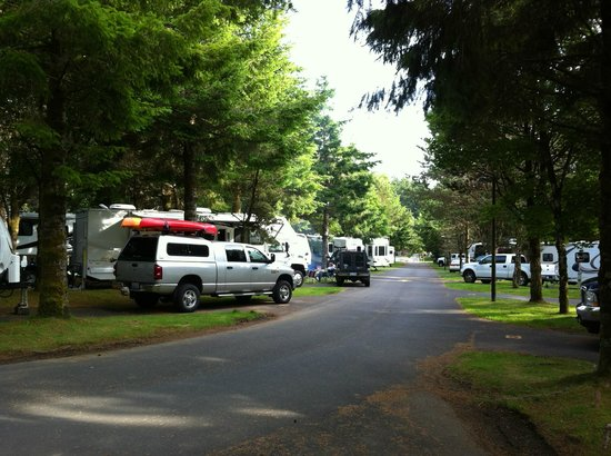 RV Resort at Cannon Beach : This RV resort is very clean and camper friendly!