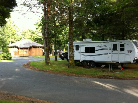 RV Resort at Cannon Beach : All the sites are very clean.