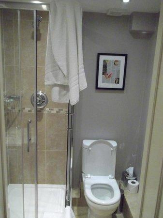Lime Tree Hotel : Baño y ducha