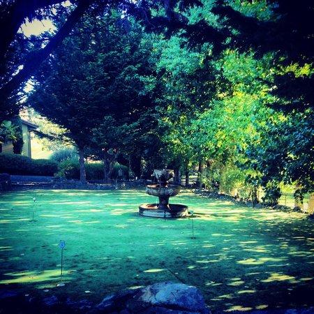 Sonoma Coast Villa Resort and Spa: Garden view