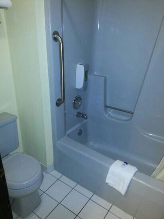 Best Western Ambassador Inn & Suites: bathroom
