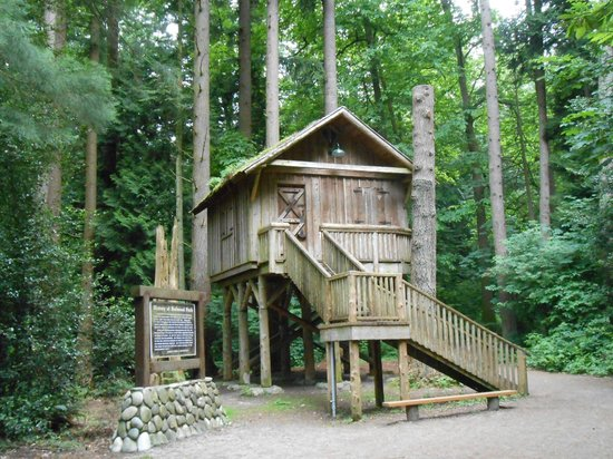 Surrey, Canada: Tree house