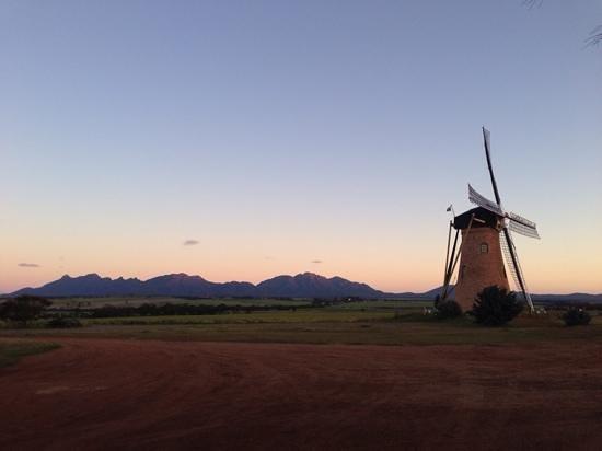 The Lily Dutch Windmill : Lily Dutch Windmill