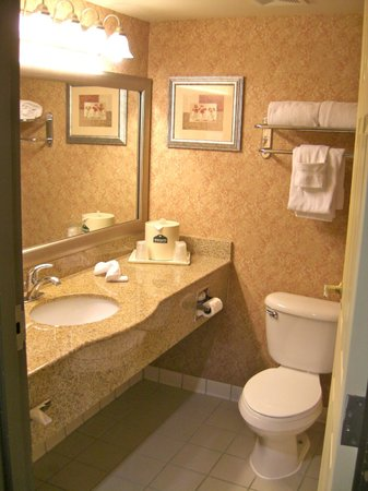 Wingate by Wyndham Convention Ctr Closest Universal Orlando: Clean bathroom