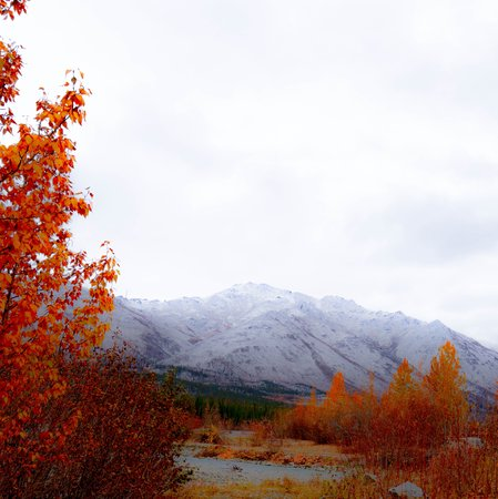 Northern Alaska Tour Company: Wiseman mining settlement