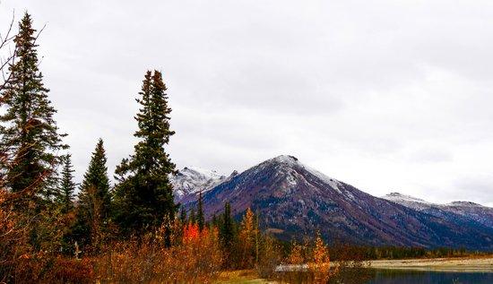 Northern Alaska Tour Company: Wiseman