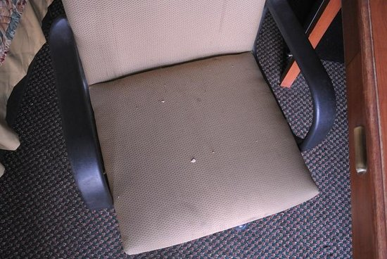 Budget Inn & Suites Colby: 09/23/13 - Do you want to sit on this?