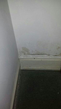 My Place Dublin Hotel: damp