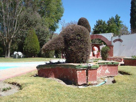 Quinta Lilibet: ¡Plantas secas y maceteros cayéndose a pedazos!