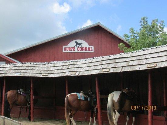 Cliff Dwellers Resort: Horseback riding near the resort