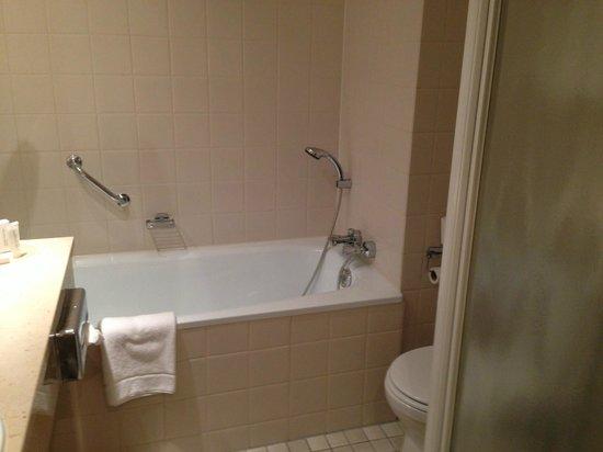 Carlton President: シャワールームの他にバスタブもあります。