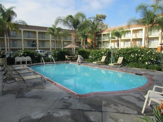 Cortona Inn & Suites Anaheim Resort : Pool area in morning