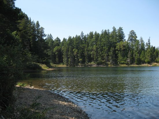 Spider Lake Provincial Park: Part of the lake near the picnic area.