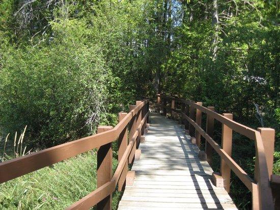 Spider Lake Provincial Park : Bridge to a second beach area.