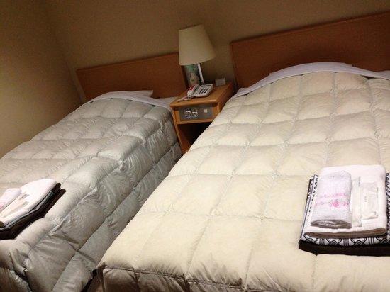 Hotel Takikawa: ツインルームの様子