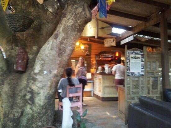 Poinciana: Lovely Cafe