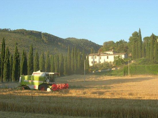 Agriturismo Collelignani: paesaggio